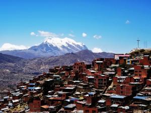 Alpinca La Paz