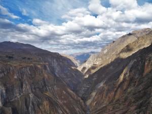 Alpinca canyon de colca