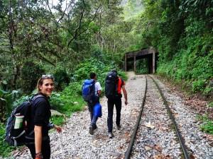 Alpinca Machu Picchu